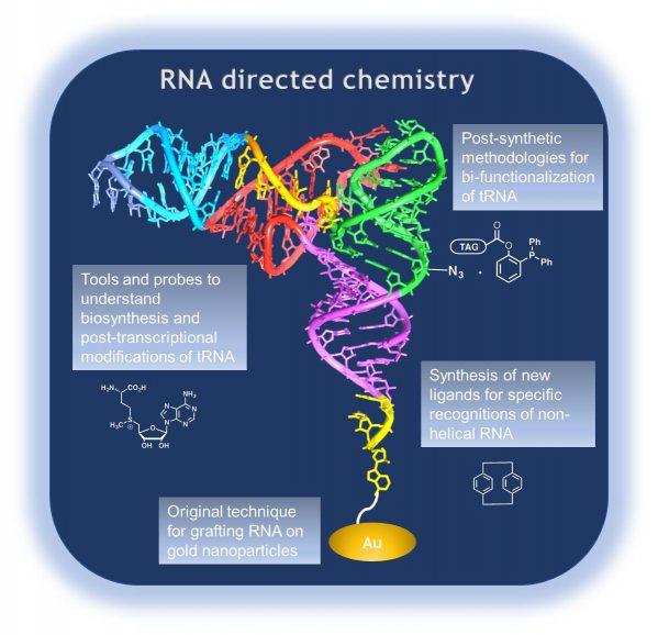 rna directed chemistry