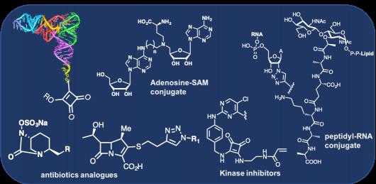 the chemistry of RNA